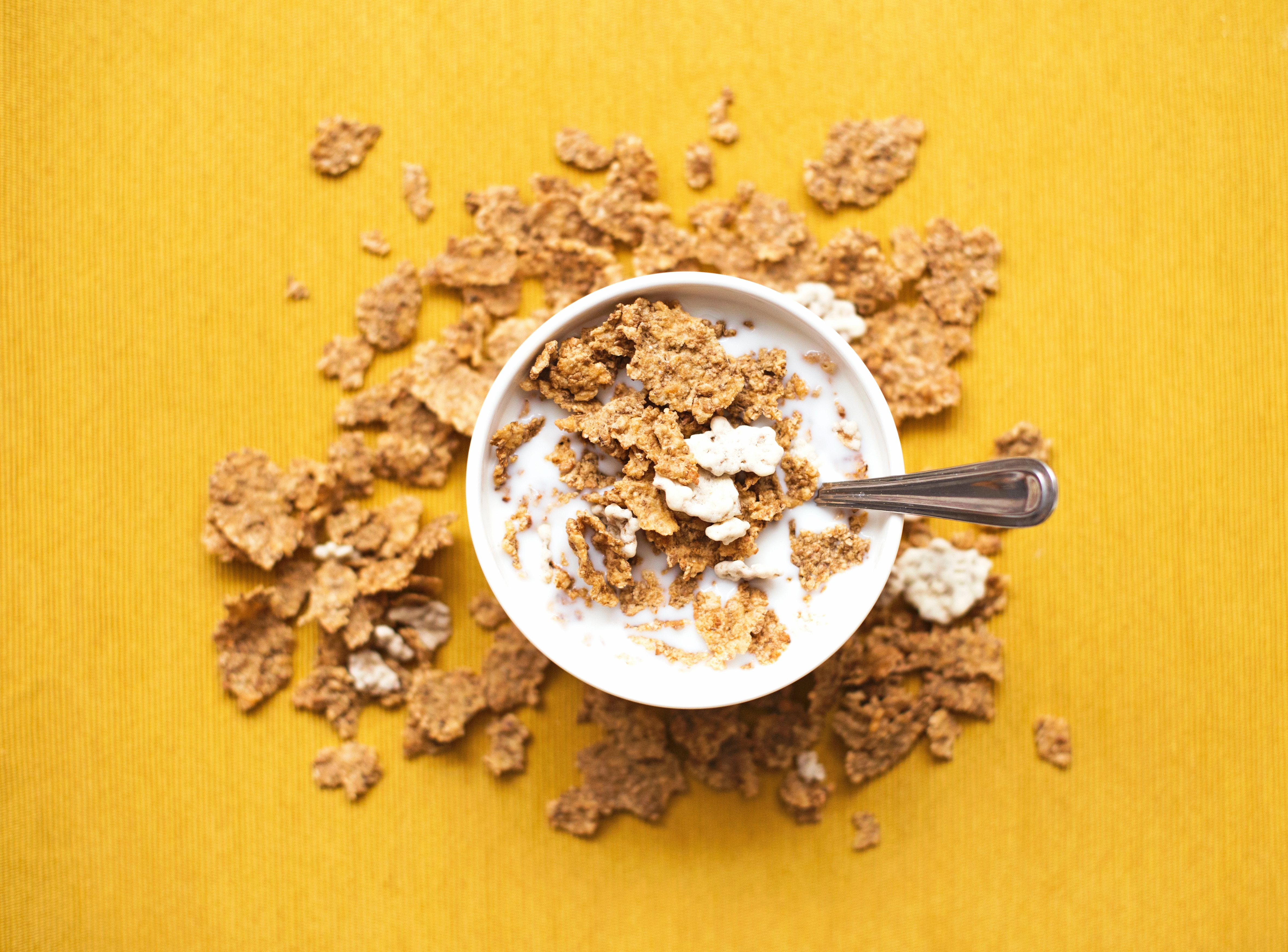 How to Eat Cereal – Bodhi Schier-Paine